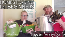 6 tips on how to get started homesteading for beginners